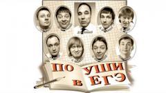 номер По уши в ЕГЭ Уральские Пельмени