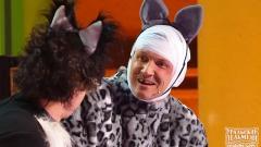 видео уральских пельменей Три кота
